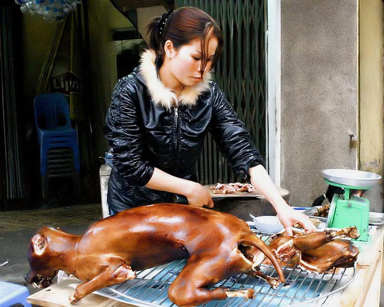 korea-dog-meat.jpg