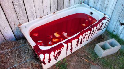 1000x563-no-chance-ranch-blood-bath